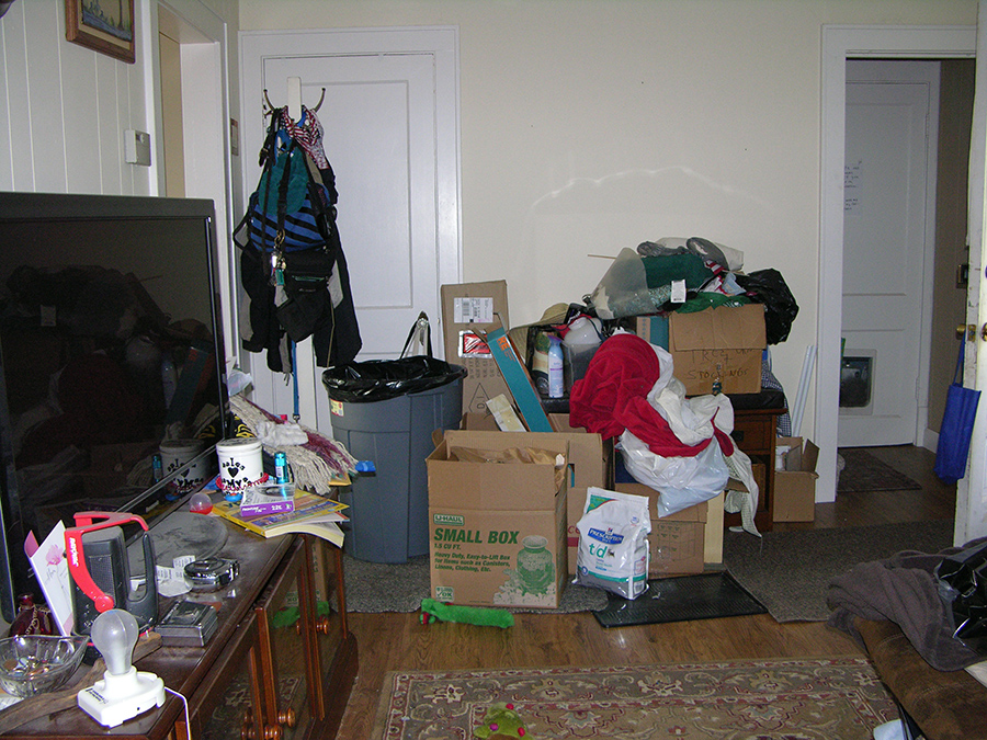 Cluttered Living Room Before